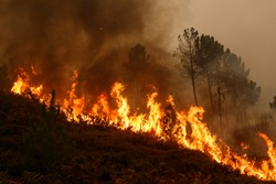 Maceda, Galicia / Spain - Oct 16 2017: Forest fire.