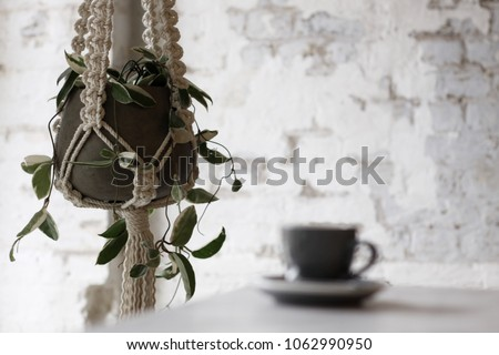 Macrame plant hanger against an exposed brick background with a coffee mug out of focus in the foreground.  #1062990950