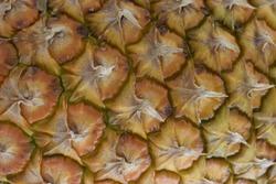Macro close up of pineapple. Photo food product tropical fruit pineapple. Texture juicy fresh fruit pineapple.