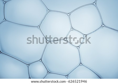 Macro close up of soap bubbles look like scienctific image of cell and cell membrane