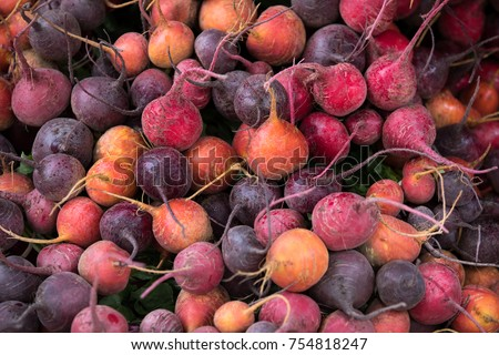 Macro close up on a pile of freshly harvested beet roots, in shades of orange and purple, making a background