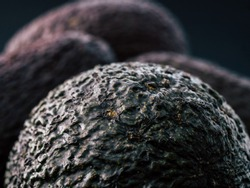 Macro close up photography of an avocados skin which looks like a pile of ugly and real alien eggs