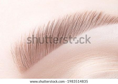 Macro, closeup female brow. Long term eyebrow lamination, tint, shaping, makeup. ストックフォト ©