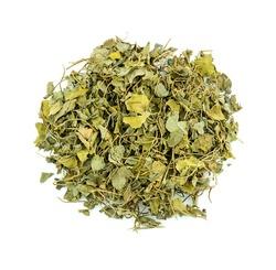 Macro closeup of fenugreek herb