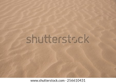 Macro closeups of the patterns on a sand in the Sahara desert in Erg Chegaga in Morocco in Morocco in the spring during a hot sunny day.