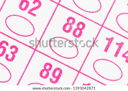 Macro detail of government paper voting ballot ovals and numbers. #1393042871