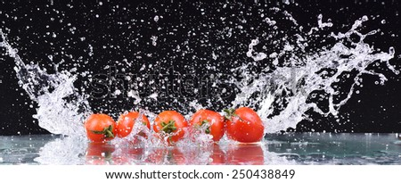 Macro drops of water fall on the red cherry tomatoes and make splash