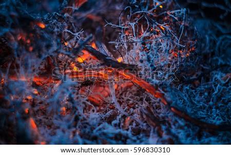 Macro Flame cold Zdjęcia stock ©