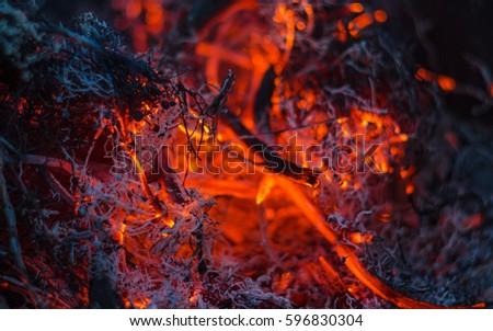 Macro Flame hot Zdjęcia stock ©