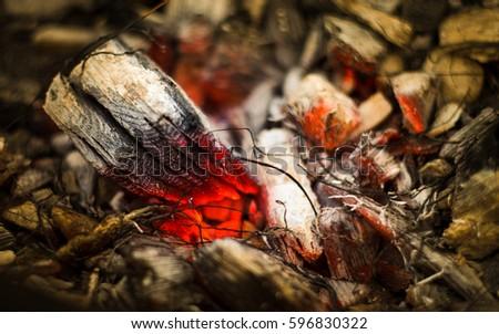 Macro Flame warm Zdjęcia stock ©