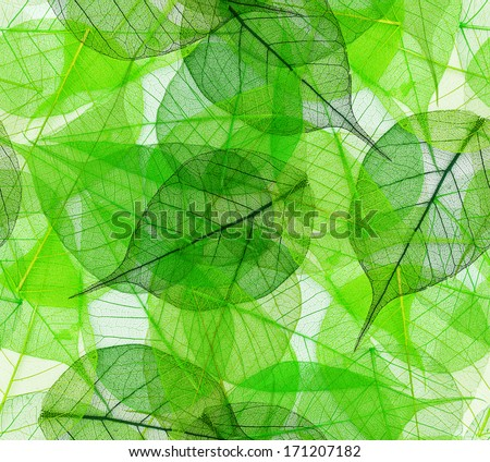 Macro green leaves seamless background