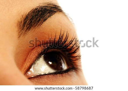 Macro image of a brown eye. Isolated on white