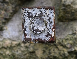 Macro image of a rusted iron bolt overgrown with lichen in the Tregargus Valley China Clay mill ruins near St Austell