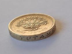 Macro image of British pound coins money