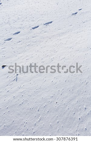 macro isolated texture of snow in the sunshine
