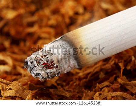 Macro of a Lit Cigarette and Tobacco