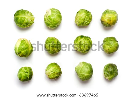 Macro of Brussels sprout buds  in rows isolated on white