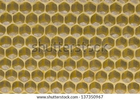 Macro of empty honeycell