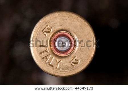 Macro of fired shotgun cartridge