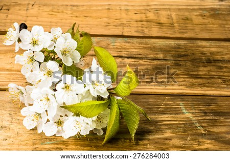 Macro of fruit blossoms on wood background for mothers day card, invitation cards, wedding invitation and greetings card, floral backgrounds