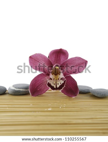 Macro of orchid and pebbles on mat