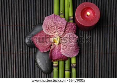 Macro of orchid and red candle with bamboo grove on mat - stock photo