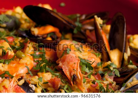 Macro of Spanish paella.
