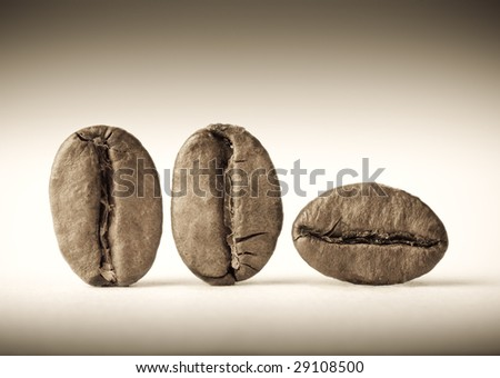 Macro of three coffee beans. Sepia tone. Shallow DOF.