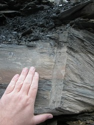 Macro of volcanic intrusion in slate
