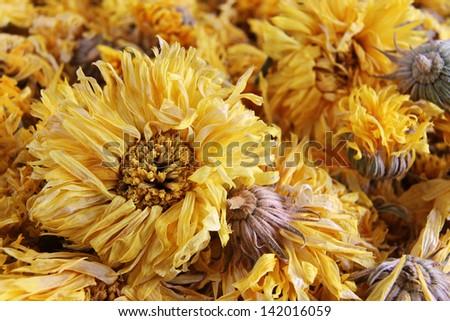 Macro of Yellow Chrysanthemum Flower Tea