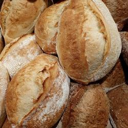 Macro photo bread. Photo bakery bread. Photo fresh bakery bread with sesame