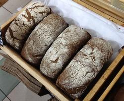 Macro photo food freshly baked bread. Background texture bread baguette bread. Stock photo fresh backed bread