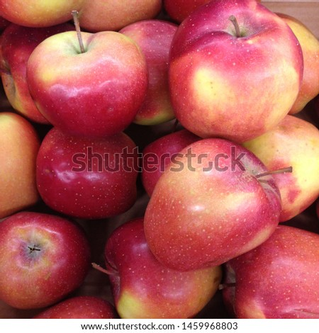Macro Photo food fruit red apples. Texture background of fresh red apples. Image of fruit product big red apples