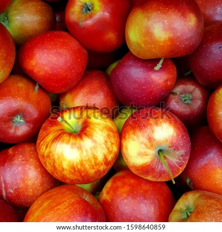 Macro Photo food fruit red apples. Texture background of fresh red pink apples. Image of fruit product big red apples