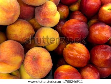 Macro Photo food tropical fruit peach. Stock photo Texture background of sweet red ripe peaches. Image food fruit peaches