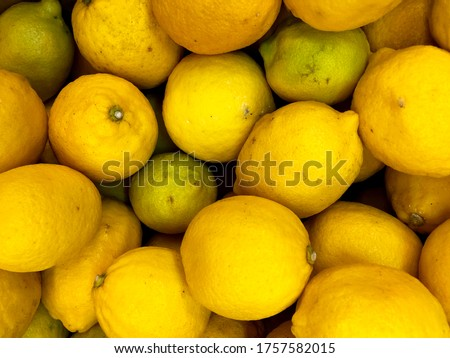 Macro Photo Lemon Fruit. Texture yellow citrus fruit lemon. Stock photo yellow lemons background