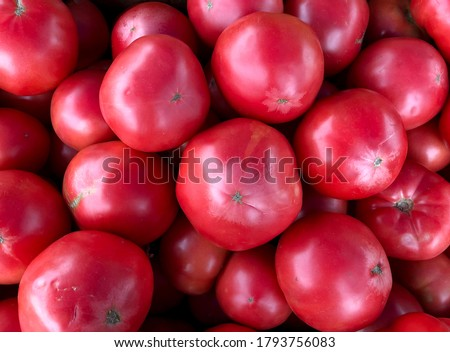 Macro photo of a vegetable red cherry tomato. Fruit vegetables tomato lies in rows. Stock photo  Background small tomatoes