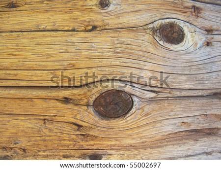 macro photo of a wood texture