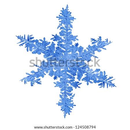 macro photo of blue isolated snowflake