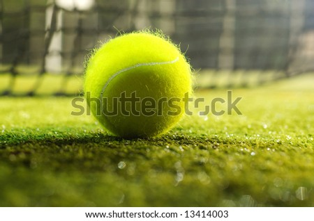 macro photo of green tennis ball on ground