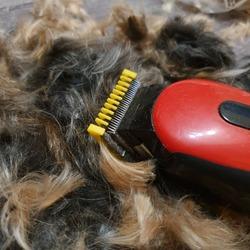 Macro photo red hair clipper. Stock photo red hair clipper in animal  hair