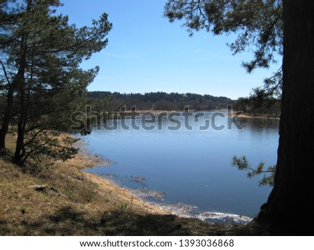 Macro photo with decorative background of natural landscape with pine trees on the shore and perspective of the river with blue water as a source for prints, posters, decor, Wallpaper, interiors