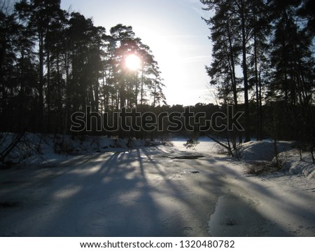macro photo with decorative landscape background of a winter Sunny day in a European city in a Park with forests on the Bank of the river as a source for prints, advertising, Wallpapers, posters