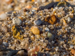 Macro Sand Texture on Beach