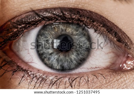 Macro shoot on womans eye iris. Human eye in close up shoot.