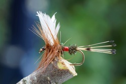 Macro shot of a Red, brown and white dry fly fishing fly used for trout fishing, leafs in background out of focus