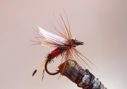 Macro shot of a red dry fly fishing lure used for trout fishing