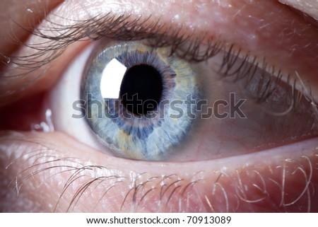 Macro shot of blue human eye focused on iris.