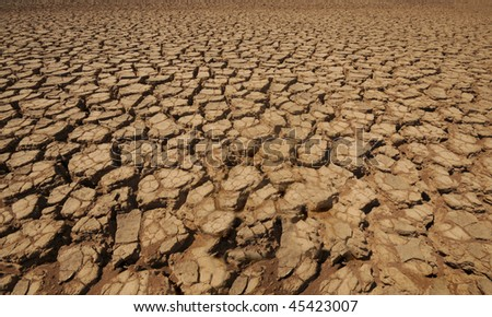 Macro shot of dried up land in a desert