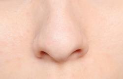 macro shot of human nose